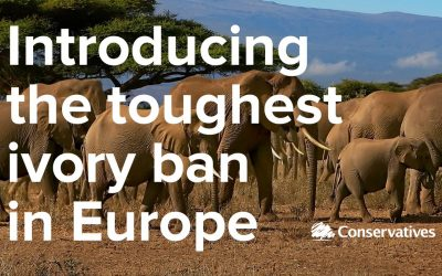 Ban on Ivory Sales